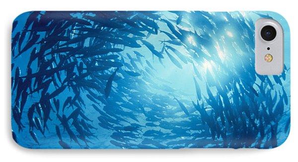 Fishes Swarm Underwater IPhone Case