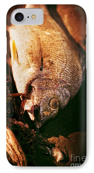 Fishy Find IPhone Case