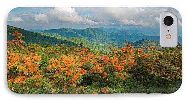 Flame Azaleas Roan Highlands Appalachian Trail IPhone Case