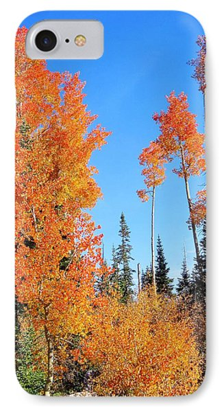 Flaming Autumn Trees In Dixie National Forest Utah IPhone Case