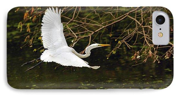 Flight Of The Egret IPhone Case