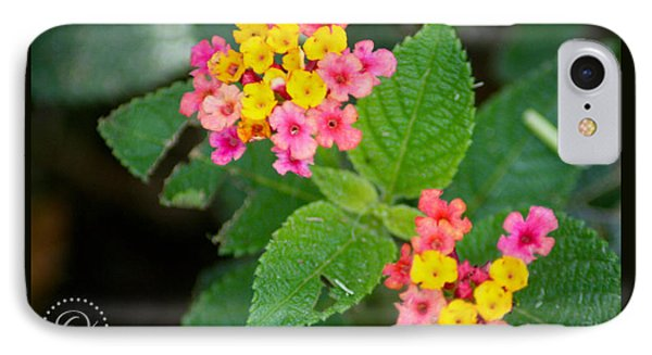 Flower Bloom IPhone Case