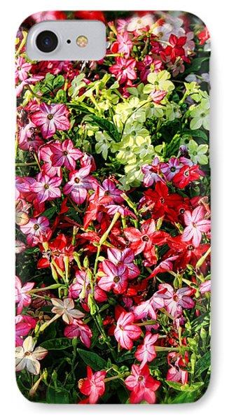 Flower Garden 1 IPhone Case