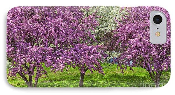 Flowering Crabapples IPhone Case