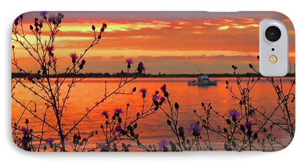 Flowers Along The Shore At Tibbetts Point  IPhone Case