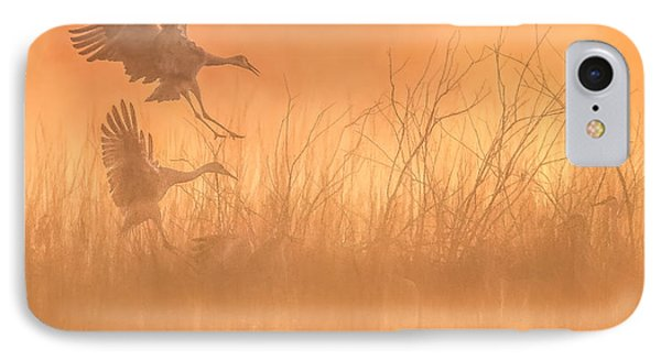 Flying Into The Light And Fog IPhone Case