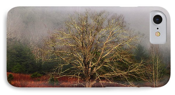 Fog Tree IPhone Case
