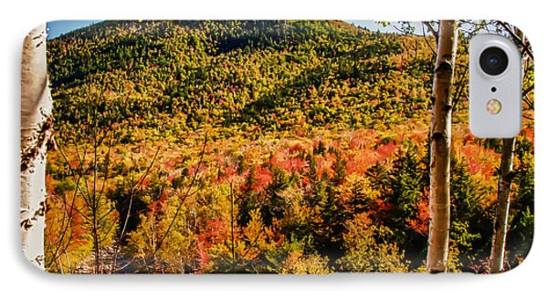 Foliage View From Crawford Notch Road IPhone Case