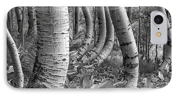 Forest Curves IPhone Case