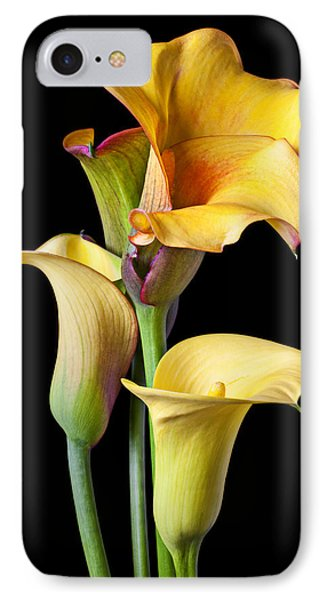 Lily iPhone 8 Case - Four Calla Lilies by Garry Gay
