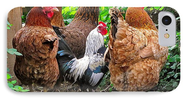 Four Hens And A Rooster IPhone Case