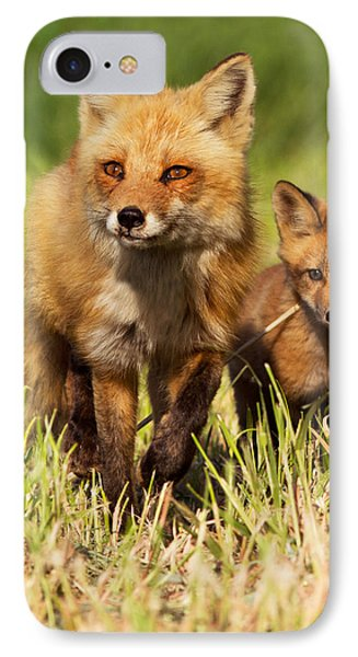 Fox Family IPhone Case