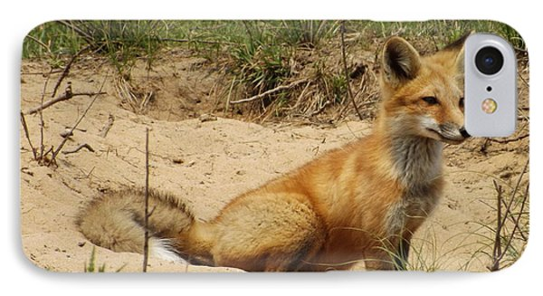 Fox In The Woods 2 IPhone Case
