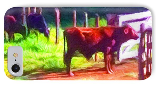Franca Cattle 2 IPhone Case