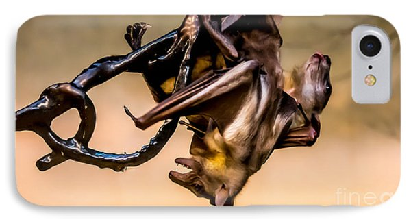 Friut Bats Mingle IPhone Case