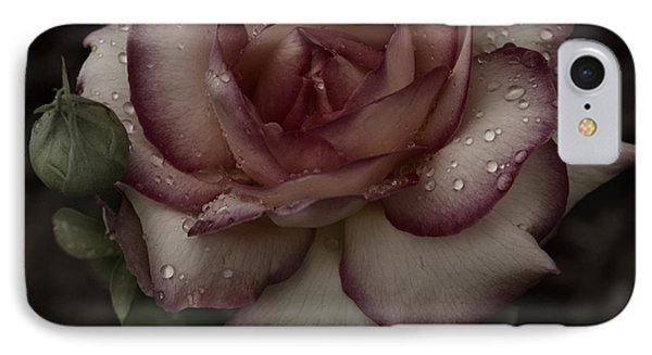 From Me To You Winter Rose IPhone Case