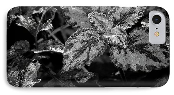 Frosted Hosta IPhone Case