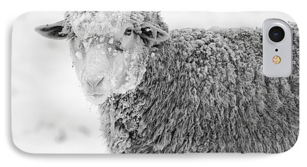 Sheep iPhone 8 Case - Frozen Dinner by Mike  Dawson