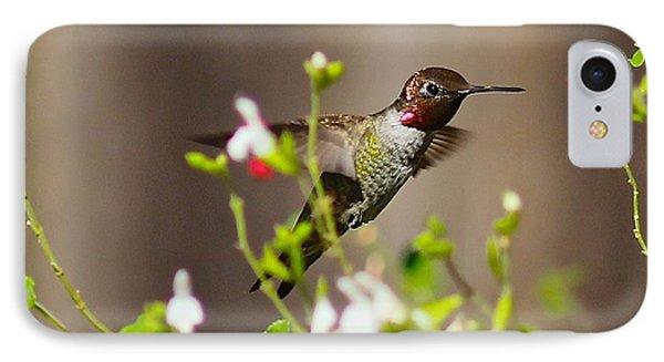 Garden Hummingbird IPhone Case