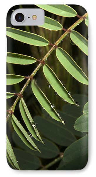 Gentle Morning Dew IPhone Case
