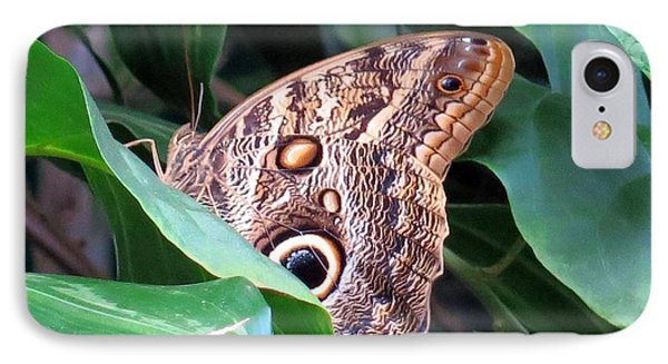 Giant Owl Butterfly IPhone Case