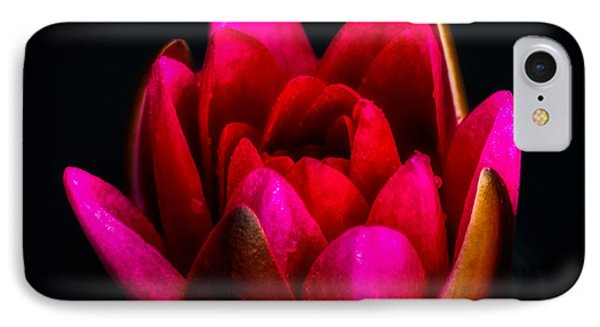 Lily iPhone 8 Case - Glorious Lily by Adrian Evans