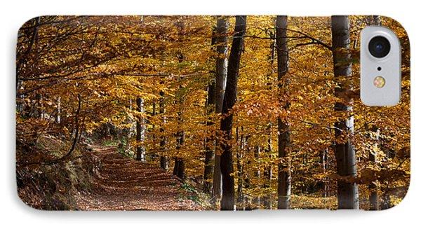 Golden Autumn IPhone Case