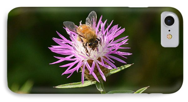 Golden Boy-bee At Work IPhone Case