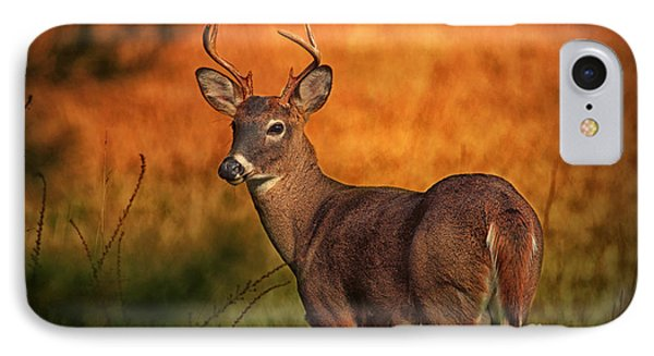 Golden Buck IPhone Case