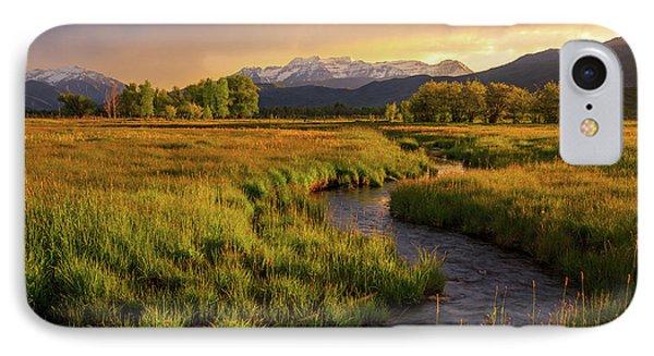 Golden Field In Heber Valley. IPhone Case