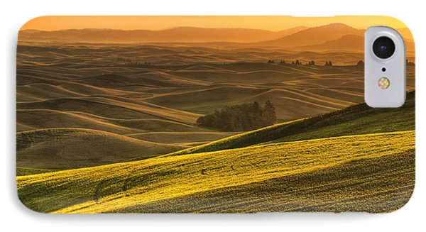 Golden Grains IPhone Case