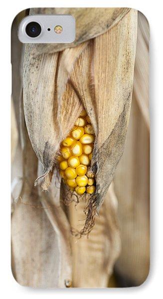 Golden Harvest IPhone Case