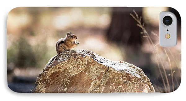 IPhone Case featuring the photograph Golden-mantled Ground Squirrel by Saija Lehtonen