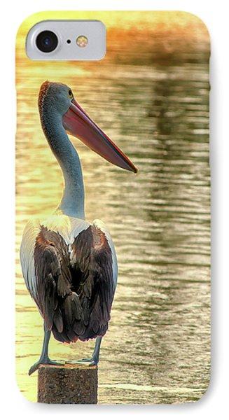 Golden Pelican IPhone Case