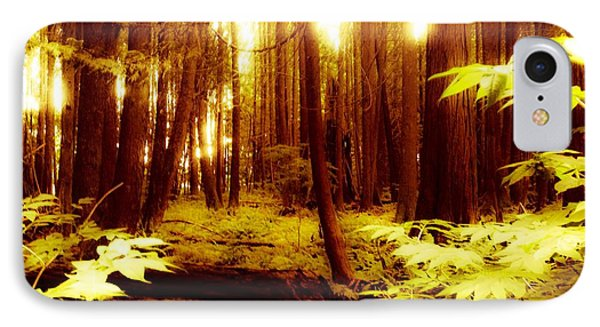 Golden Woods IPhone Case