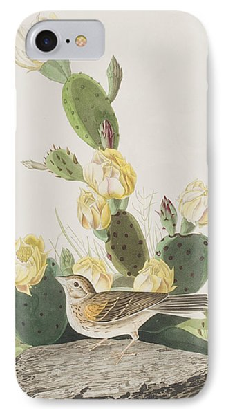 Grass Finch Or Bay Winged Bunting IPhone Case