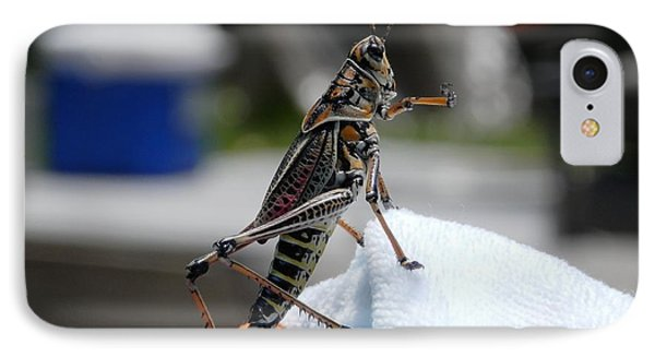 Dancing Grasshopper At The Pool IPhone Case