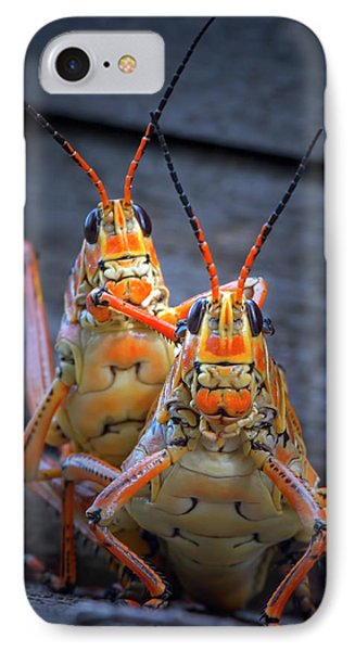 Grasshoppers In Love IPhone Case