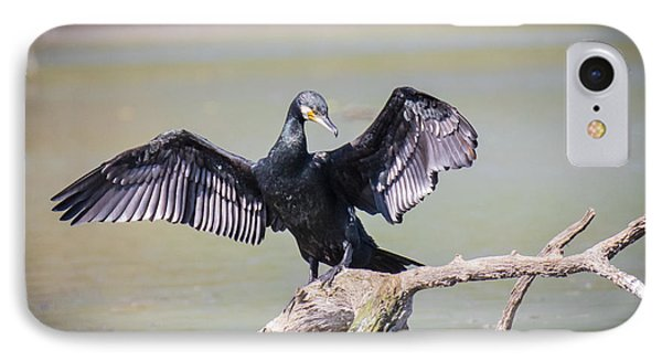 Great Black Cormorant Drying Wings After Fishing IPhone Case