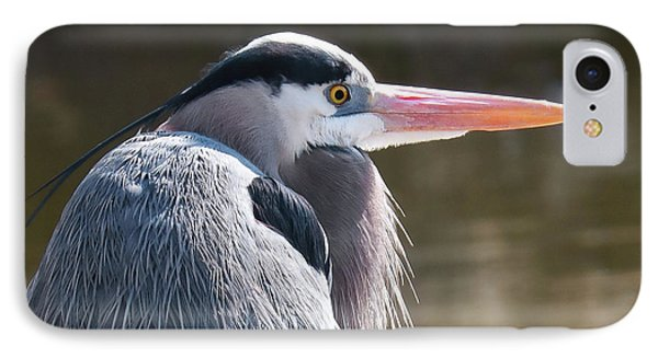 Great Blue Beauty IPhone Case