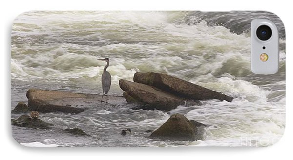 Great Blue Heron On Waterfall Boulders   St. Joe River     Indiana   Autumn IPhone Case