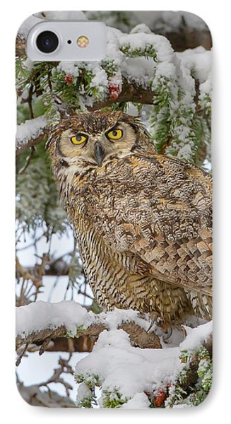 Great Horned Owl In Snow IPhone Case
