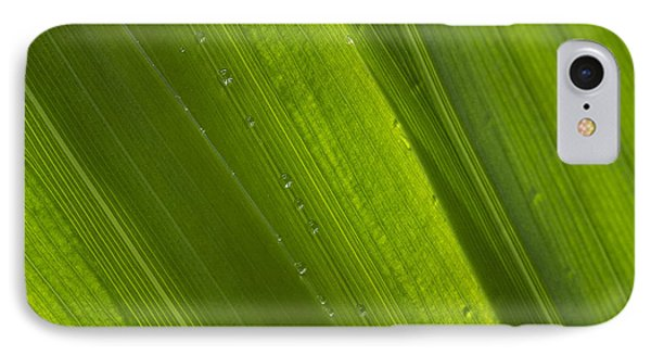 Green Abstract 2 IPhone Case
