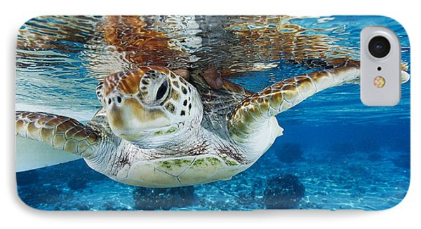 Green Turtle IPhone Case