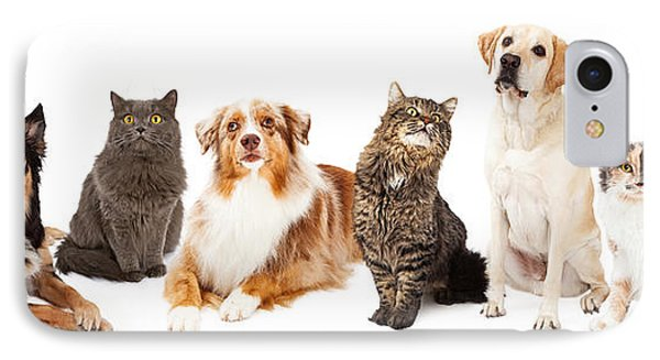 Group Of Cats And Dogs IPhone Case