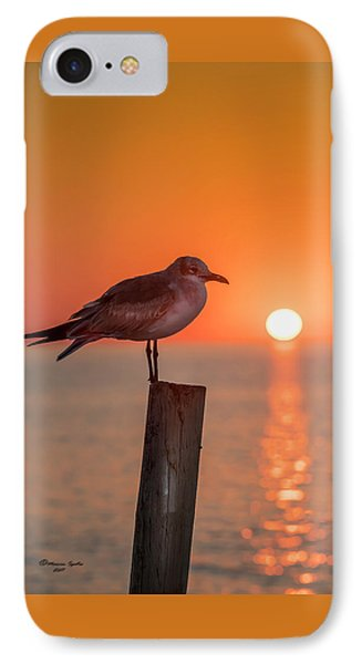 Gull And Sunset IPhone Case