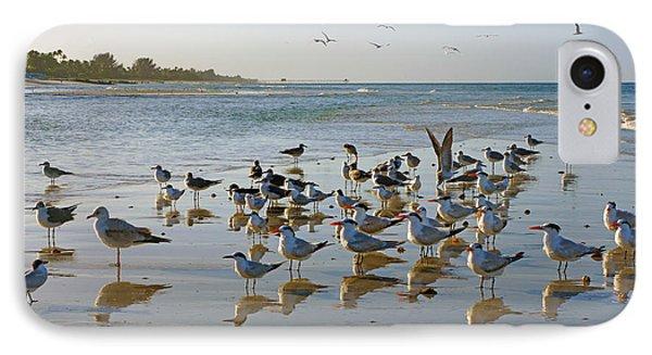 Gulls And Terns On The Sanbar At Lowdermilk Park Beach IPhone Case