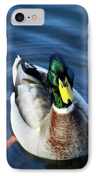 Handsome Male Mallard IPhone Case