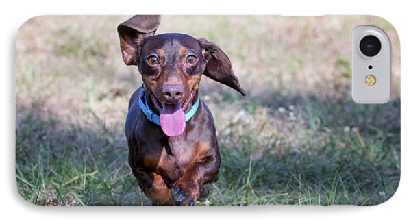 Happy Dachshund IPhone Case