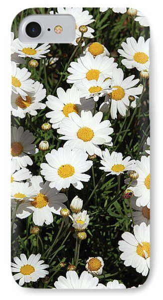 Daisy iPhone 8 Case - Happy Daisies- Photography By Linda Woods by Linda Woods